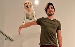 [Vui] Nhờ Photoshop sao cho giống Shaggy và Scooby-Doo, cả chủ lẫn chó đều ăn quả đắng