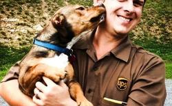 Vì quá yêu chó, anh tài xế UPS lập hẳn một trang Facebook chỉ để up ảnh những chú cún đã gặp khi đi làm