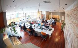 CEO startup Hootsuite chia sẻ về nghệ thuật xây dựng văn hóa công ty khiến nhân viên nào cũng muốn gắn bó trọn đời