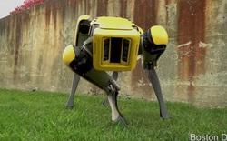Boston Dynamics cho ra mắt phiên bản nâng cấp của chó robot SpotMini: Di chuyển mượt hơn, giống chó hơn