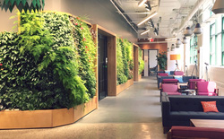 Cùng ngắm qua 10 văn phòng làm việc đẹp như mơ khiến nhân viên đi làm cả ngày mà không hề thấy chán