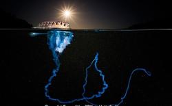 13 bức ảnh chụp dưới mặt nước đẹp không thể tin được, như đến từ hành tinh khác vậy
