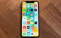 """Tạp chí Forbes chia sẻ 9 điều """"chưa ai biết"""" về iPhone X"""