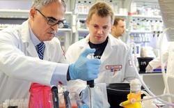Khoa học tiết lộ, cấu trúc Gen có thể ảnh hưởng đến mức thu nhập của mỗi người