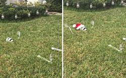 [Vui] Khi những kẻ lười biếng bị giao nhiệm vụ trang trí Giáng sinh