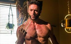 Nếu Marvel và Fox thỏa thuận thành công, Hugh Jackman sẽ tiếp tục thủ vai Wolverine