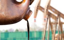 Chính thức: Ngân hàng Thế giới sẽ dừng hỗ trợ tài chính cho nhiên liệu hóa thạch sau năm 2019