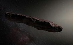 Các nhà khoa học hàng đầu đang điều tra xem đây có phải là phi thuyền của người ngoài hành tinh vừa ghé thămHệ Mặt Trời hay không