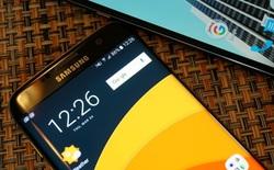 Thị trường AMOLED dự báo tăng trưởng mạnh trong 5 năm tới, khả năng soán ngôi LCD rất cao