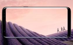 """Samsung Galaxy S8 và S8+ chiến thắng giải """"Chiếc điện thoại của năm 2017"""""""