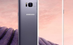 """Bộ đôi Galaxy S8/S8 Plus lộ """"số đo 3 vòng"""" trước giờ G, có cả phiên bản 6GB RAM"""