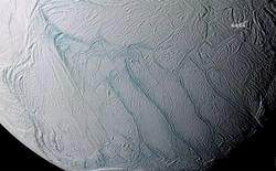 NASA: Mặt trăng Enceladus của Sao Thổ có đủ các yếu tố để tồn tại sự sống