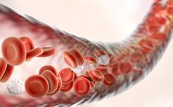 SoftBank và nhiều công ty khác đầu tư hàng trăm triệu USD vào công nghệ xét nghiệm ung thư bằng máu