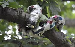 6 ví dụ minh họa cho thấy robot không còn là những thứ cứng ngắc, di chuyển thiếu tự nhiên như bạn nghĩ