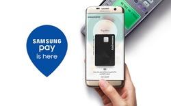 Chỉ sau 1 năm, lượng người dùng Samsung Pay tại Hàn Quốc đã tăng gấp đôi