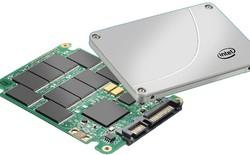Năm sau, giá SSD có thể sẽ giảm mạnh