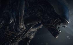 Vẻ đẹp nguyên bản của Xenomorph trong phim Alien - Một trong những con quái vật mang tính biểu tượng nhất ngành điện ảnh