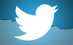 Nhìn biểu đồ sau mới thấy Twitter đang suy tàn như thế nào