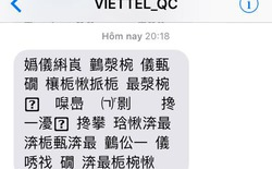 Tổng đài Viettel bất ngờ gửi loạt SMS chữ tượng hình, khẳng định chỉ là lỗi do nhân viên kỹ thuật