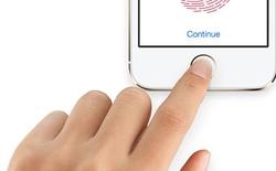 Chẳng phải Apple hay Samsung, đây mới là công ty tiềm năng giới thiệu điện thoại với máy quét vân tay dưới màn hình đầu tiên