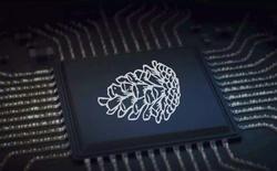 Lộ diện thông số kỹ thuật 2 con chip cây nhà lá vườn của Xiaomi, một trong số đó sẽ cạnh tranh với Snapdragon 835