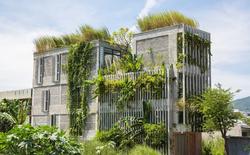Trông xa tưởng nhà bỏ hoang, lại gần mới biết là văn phòng có kiến trúc thú vị nhất nhì Đà nẵng