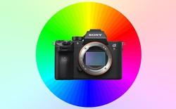 Nhiếp ảnh gia chụp hàng loạt ảnh để chứng minh Sony chụp màu không đẹp bằng Canon