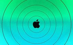 Apple mua lại chính công ty mình từng ruồng rẫy vào năm ngoái với giá 300 triệu USD