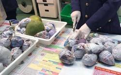 Hải quan Nhật Bản áp dụng luật cấm: Du học sinh, khách du lịch không được mang theo đồ ăn, hoa quả khi nhập cảnh