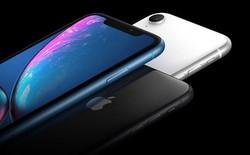 Ming-Chi Kuo: iPhone XR sẽ giúp Apple thay đổi cục diện thị trường Trung Quốc khi các hãng nội địa đang dần suy yếu