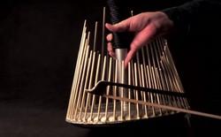 Thứ nhạc cụ trông như cái bu gà này có thể tạo ra hầu hết âm thanh trong phim kinh dị
