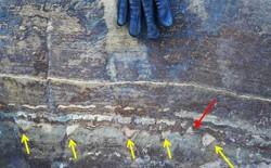 """Phát hiện về """"hóa thạch"""" 3,7 tỷ năm tuổi lại một lần nữa gây sốc vì có vẻ đó chỉ là đá bình thường"""