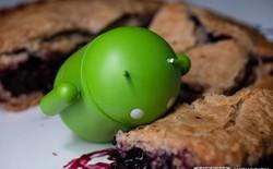 Thống kê thị phần các phiên bản Android trong tháng Chín: Android Pie gần như mất tích