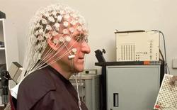 Các nhà nghiên cứu liên kết 3 bộ não người lại để chơi xếp hình, thành công với độ chính xác lên tới 81,25%