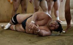 Gian nan vất vả đằng sau ánh hào quang của các võ sĩ Sumo - môn võ được kính trọng bậc nhất tại Nhật Bản