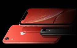 Việc thay kính cho iPhone XR cũng có thể khiến bạn mất một khoản tiền không nhỏ