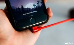 Lo gì sạc iPhone đứt gãy khi đã có cáp đầu L này, giá chỉ 60.000 đồng mà bền bỉ không ngờ!