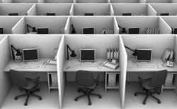 Đây là 5 yếu tố không ngờ ảnh hưởng đến hiệu suất làm việc của bạn ở văn phòng
