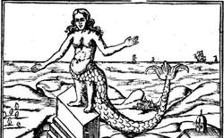 """Bí ẩn thế giới: Sự thật xoay quanh câu chuyện về """"Người Cá"""" và những truyền thuyết ít người biết tới (P1)"""