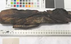 Sử dụng máy chụp cắt lớp, các nhà nghiên cứu đọc được cả văn tự cổ 500 năm đã bị cháy sém
