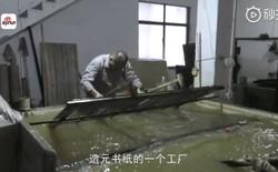 Ra giá 670.000 đồng/xô, nghệ nhân Trung Quốc vẫn gặp khó khăn trong việc thu mua nước tiểu bé trai về làm giấy