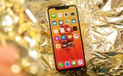 Thầy đồng Ming-Chi Kuo: iPhone 2019 giữ nguyên kích thước màn hình, sử dụng ăng ten loại mới
