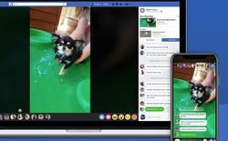 Facebook Messenger chuẩn bị có tính năng mới, cho phép xem chung video với bạn bè