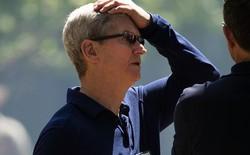 Vì giá của iPhone XR, Goldman Sachs đánh tụt cổ phiếu Apple lần thứ hai trong tháng