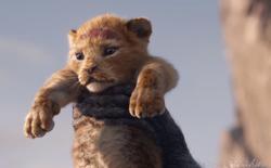 Disney tung trailer đầu tiên của Vua Sư Tử bản remake, sẵn sàng ra rạp vào tháng 7/2019