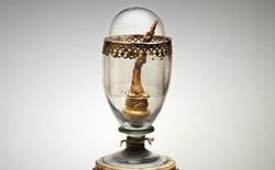 Ngón tay giữa nổi tiếng nhất, được lưu giữ như thánh tích trong bảo tàng Italy thuộc về... Galileo Galilei