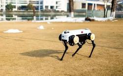 """Trung Quốc cái gì cũng làm được, kể cả phiên bản """"nhái"""" y hệt robot chó SpotMini của Boston Dynamics"""