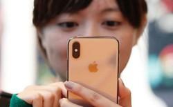 Qualcomm giành chiến thắng, Tòa án Trung Quốc ra lệnh cấm bán nhiều dòng iPhone tại nước này