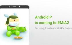 Xiaomi Mi A2 sẽ là smartphone Android One đầu tiên của Xiaomi được lên đời Android Pie