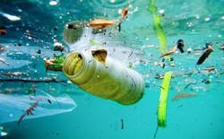 Ai cũng nghĩ đại dương sâu thẳm đã chứa đầy những sinh vật kỳ dị và khủng khiếp với chúng ta rồi, hóa ra có một thứ còn khủng khiếp hơn